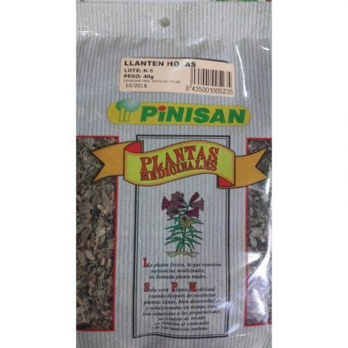 Llantén hojas 40 gr. Pinisan