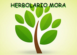 Herbolario Mora Logo