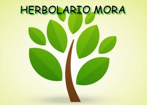 Herbolario Mora FITOTERAPIA Y ALIMENTACIÓN ECOLÓGICA Logo